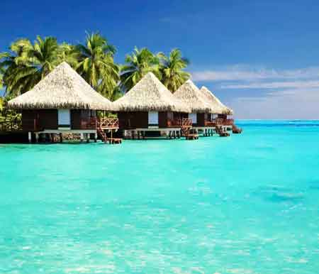 جزیره galapagos